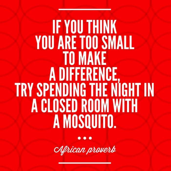 mosquito quote