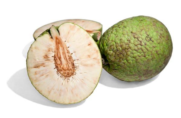 Breadfruit friedas.com - Copy